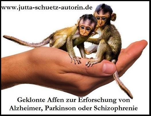 Geklonte Affen für die DEMENZ-Hirnforschung
