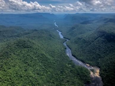 Der Potaro River schlängelt sich durch den Primär-Regenwald Guyanas. Foto: David DiGregorio