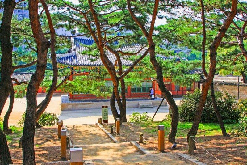 Mit Gebeco Südkorea erleben