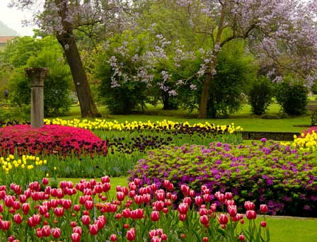 Tulpen in Villa Taranto © Roberto Maggioni